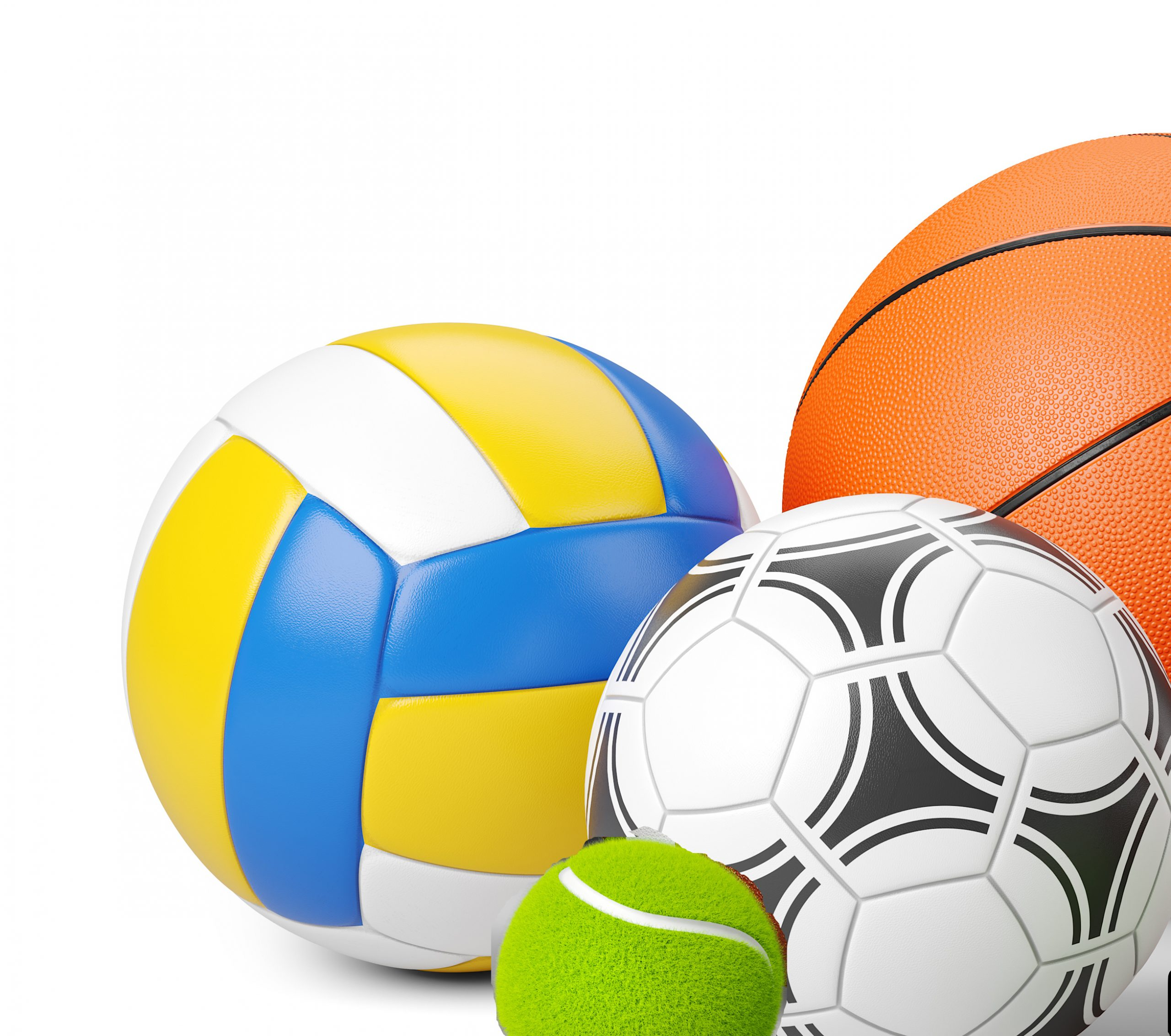 Sports shop logo. Group of balls the team games isolated on whit